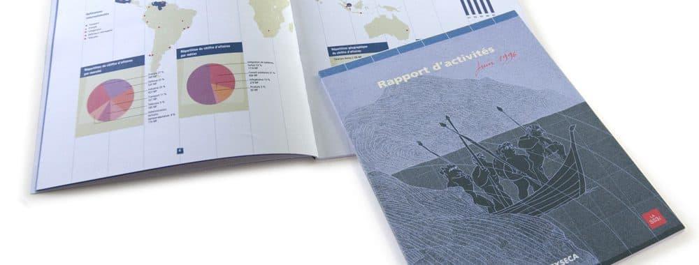 Rapport annuel Syseca 1